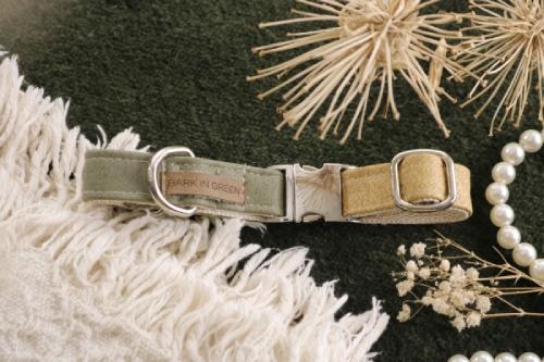 collar perro oliva y maiz